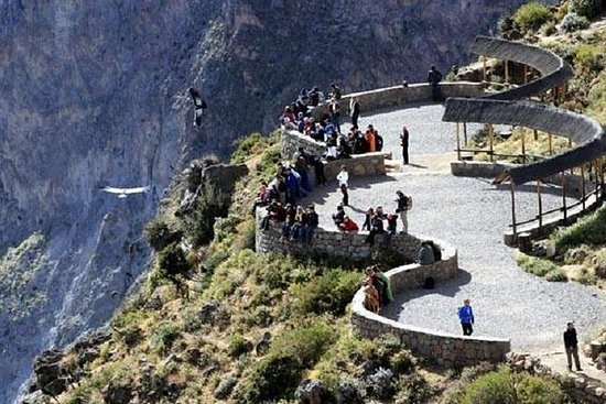 Colca Canyon in One Day from Arequipa