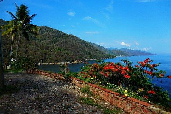 3-Rit Fiets Arrangement in Puerto ...
