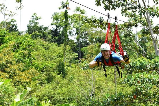 Canopy Zipline Tour con Superman...