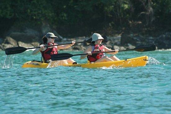 Excursion en kayak sur l'île de Damas...