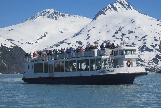 Portage Glacier Cruise and Wildlife Explorer Tour