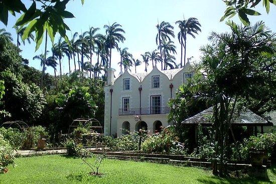 Barbados Harrison's Cave und St...