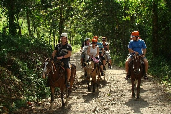 Canopy and Horseback Riding at Arenal...
