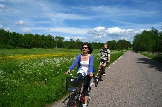 スウェーデンの田舎のプライベートバイクツアー