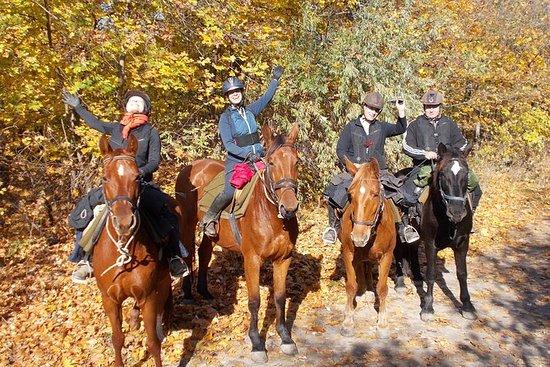 Equitation près de Budapest