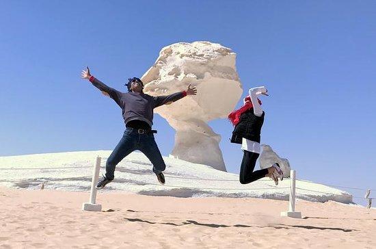 Excursão privada de safári no deserto...