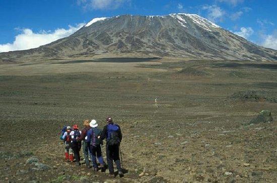 5-Tages Mount Kenya Aufstieg von...