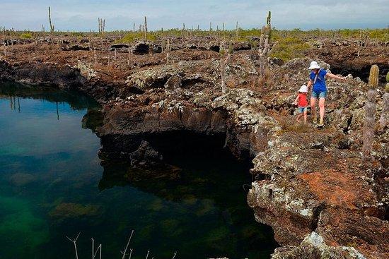 Los Tunelesへの半日旅行Isabela GalapagosのCab…