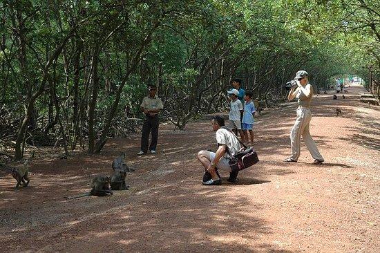 Sai Gon: Can Gio Biosphere Reserve e