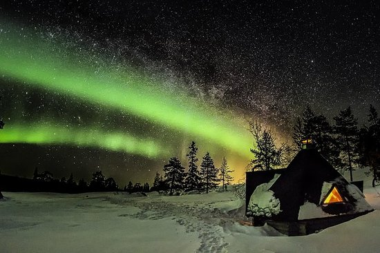 Northern Lights Photography Tour from...