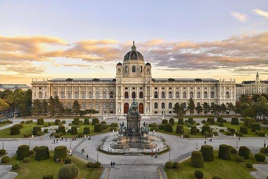 ウィーン美術史美術館入場券