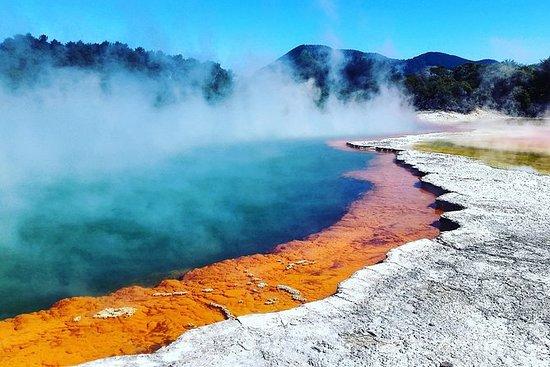 Absolutely Rotorua