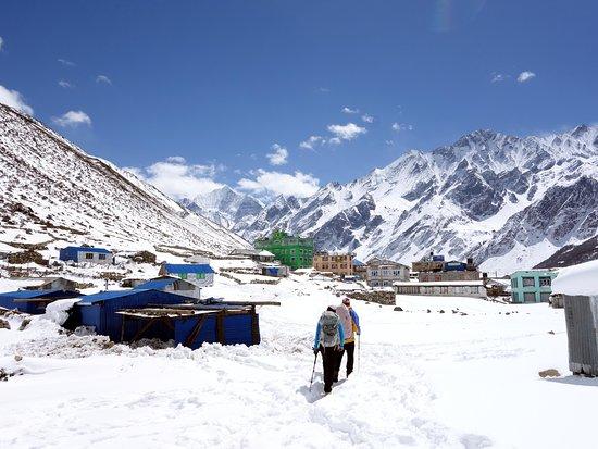 Trek Around Himalayas