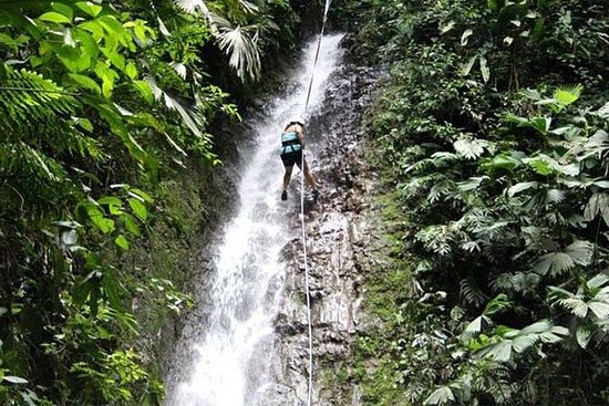 Adrenaline Junkie de Jacó