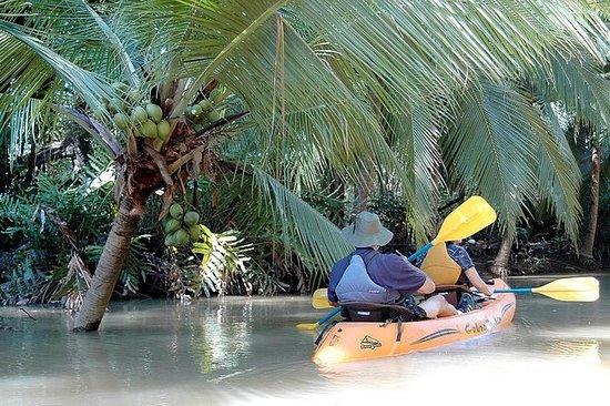 Mangrove monkey land on kayak or...