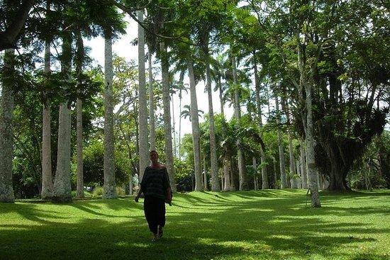 Aburi Botanical Gardens and Shai...
