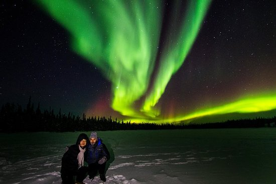 4- to 6-Hour Northern Lights Tour...