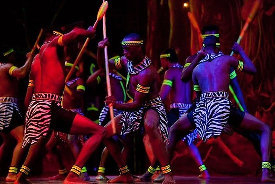 Safari Park Hotel Cat Dancers et...