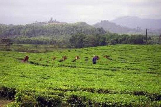 Bho Hoong et Co Tu Villages 1Jour de...