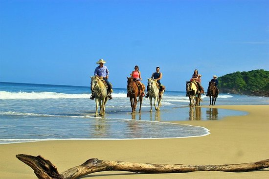 HORSEBACK RIDING in the beach