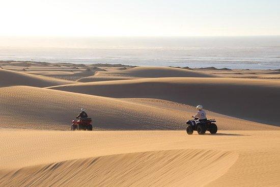 Half day quad biking: Big dunes and...