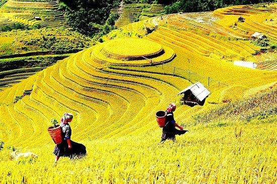 Dagstur Ha Giang Trekking Tour fra Ha...