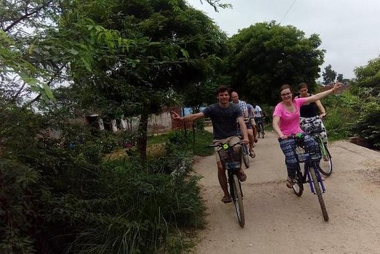 TOUR DE BICICLETA TAJ NATURE Y...
