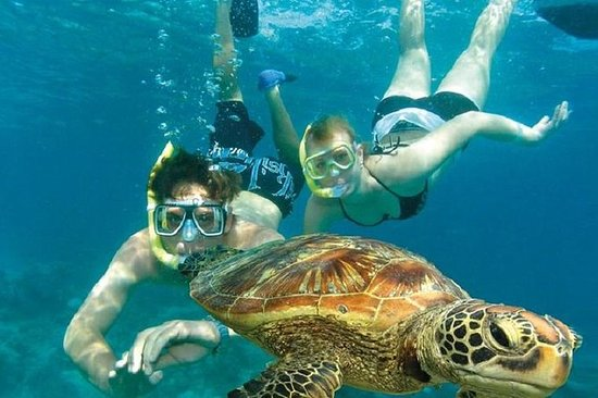 Snorkelling at Semizce