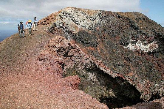 Sierra Negra Volcano Walking Tour in...