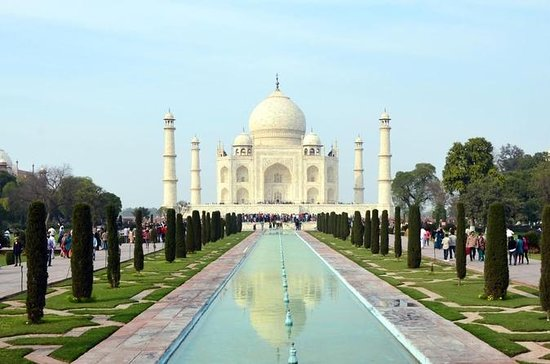 Viaje guiado a Tajmahal y el Fuerte de...