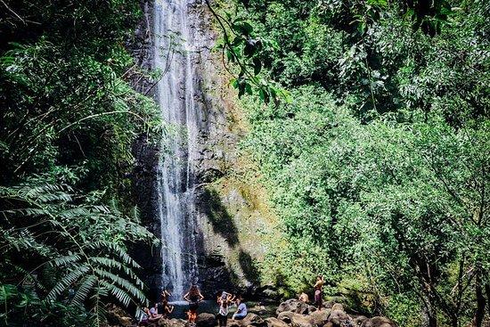 オアフ島の滝と熱帯雨林のハイキング