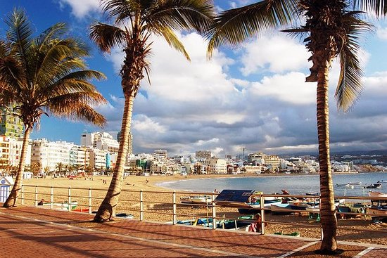 Guided Tour of Las Palmas including...