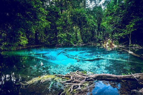 Krabi Emerald Pool, Hot Spring and...