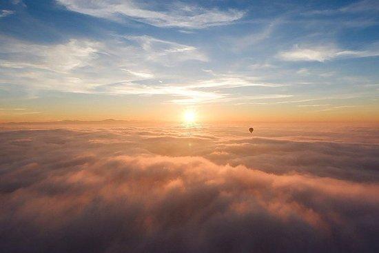 Hot Air Balloon Ride e Falcon show a