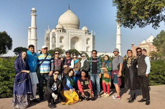 En dag Taj Mahal tur fra Delhi med...