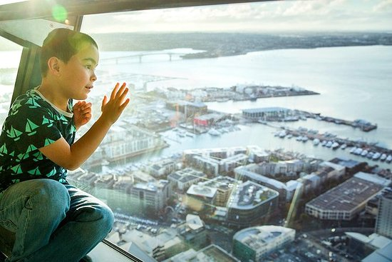 Sky Tower - Normaler Eintritt in ...