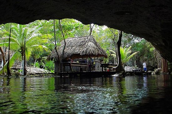 Mayan Jungle Adventure Tour: Mayan Jungle