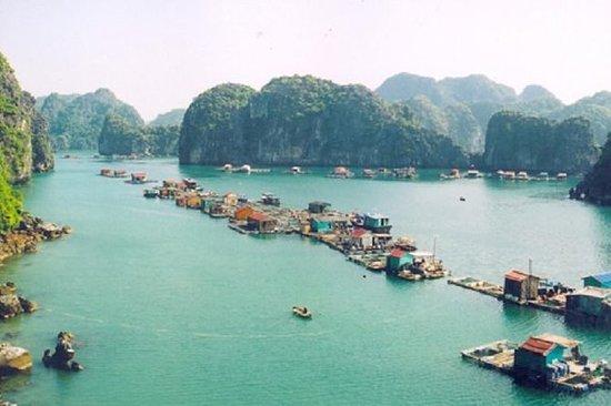 Cat Ba Tours 1 dag Lan Ha Bay Ha Long ...