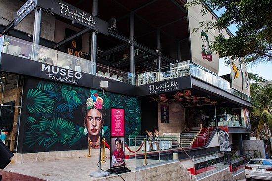 Entrada normal al Museo Frida Kahlo