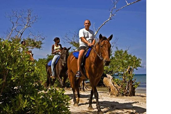 Negril - Horse Back Ride And Swim