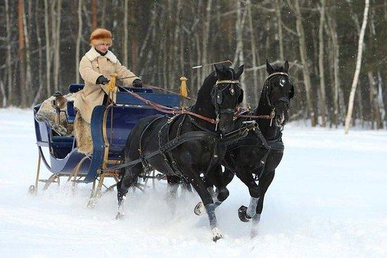 Slitta trainata da cavalli a Kuskovo