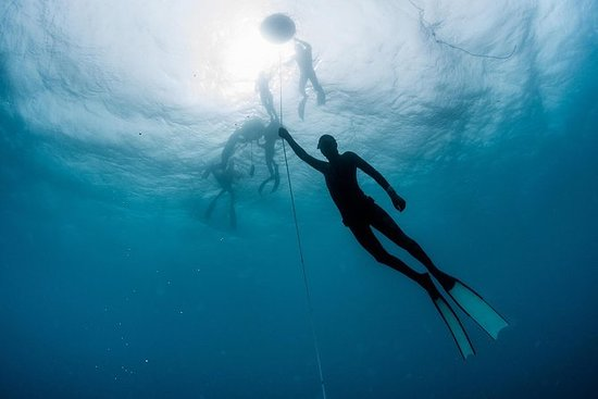 PADI Freediver nybörjarkurs