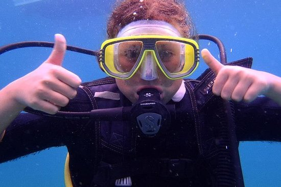 1-Day Discover scuba diving Course in...