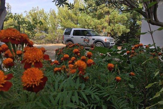Land Rover Safari en la Ruta del...