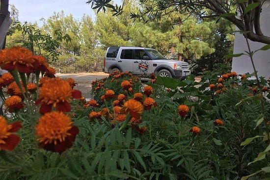 Land Rover Safari in Rhodes North...
