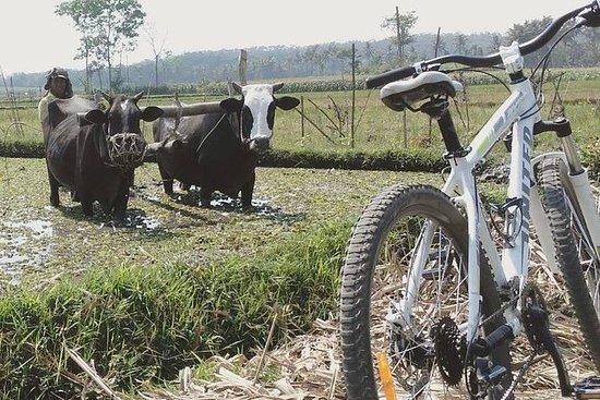 Malang Cycling & Village Tour