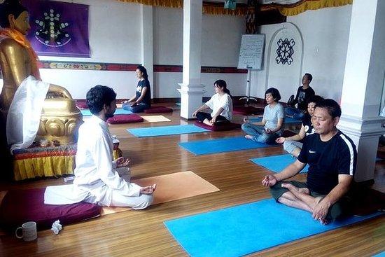 Die Boudhanath Yoga Erfahrung in Nepal