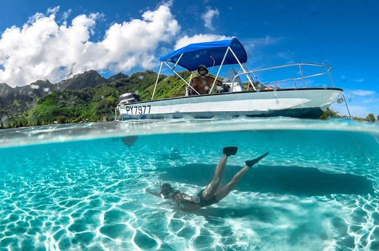 Private 4-Hour Boat Tour of Moorea...
