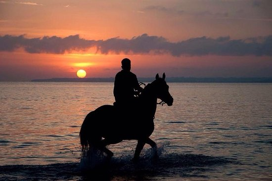Puerto Plata Sunset Horse Back Riding...