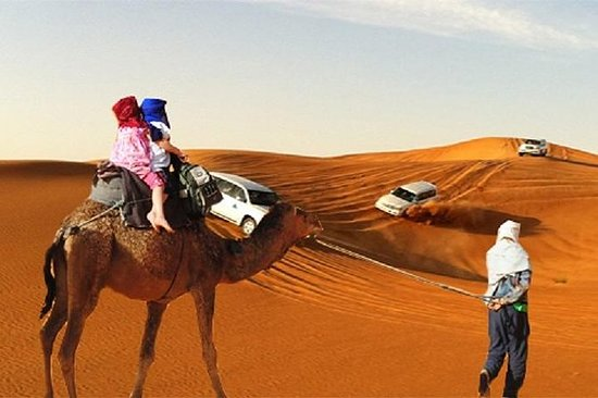 Dubai Evening Desert Safari Tour med...